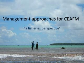 Management approaches for CEAFM