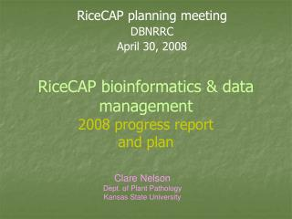 RiceCAP bioinformatics & data management 2008 progress report and plan