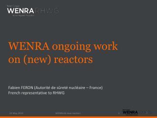 Fabien FERON (Autorité de sûreté nucléaire – France) French representative to RHWG