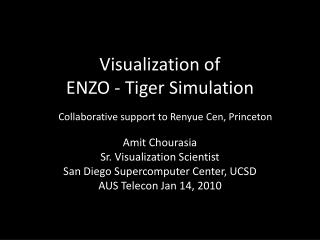 Visualization of  ENZO - Tiger Simulation
