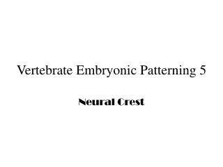 Vertebrate Embryonic Patterning 5
