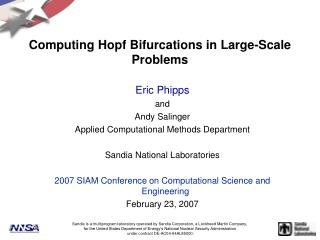 Computing Hopf Bifurcations in Large-Scale Problems