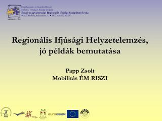 Regionális Ifjúsági Helyzetelemzés, jó példák bemutatása Papp Zsolt Mobilitás ÉM RISZI