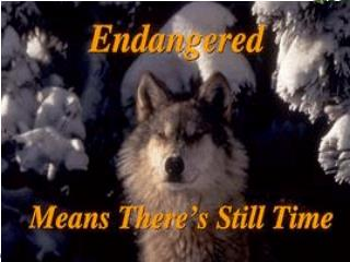 Endangered Means  There ' s Still Time