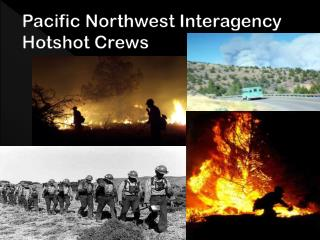 Pacific Northwest Interagency Hotshots