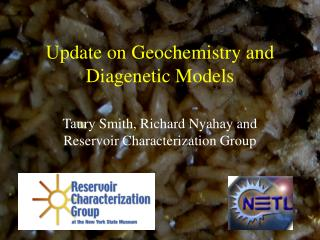Update on Geochemistry and Diagenetic Models
