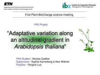 """Adaptative variation along an altitudinal gradient in  Arabidopsis thaliana """