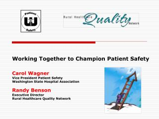 Working Together to Champion Patient Safety Carol Wagner Vice President Patient Safety