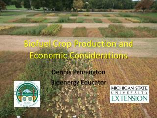 Biofuel Crop Production and Economic Considerations