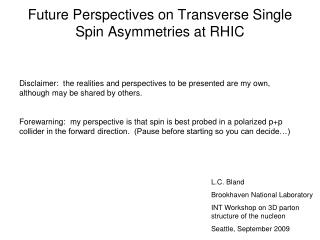 Future Perspectives on Transverse Single Spin Asymmetries at RHIC