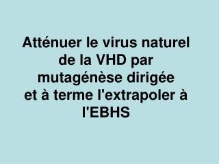 Atténuer le virus naturel de la VHD par mutagénèse dirigée et à terme l'extrapoler à l'EBHS