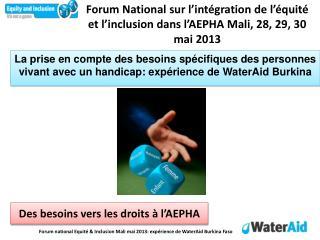 Forum National sur l'intégration de l'équité et l'inclusion dans l'AEPHA Mali, 28, 29, 30 mai 2013