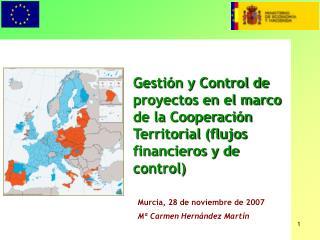 Murcia, 28 de noviembre de 2007 Mª Carmen Hernández Martín