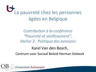 Karel Van den Bosch, Centrum voor Sociaal Beleid Herman Deleeck
