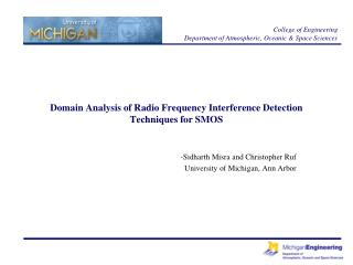Domain Analysis of Radio Frequency Interference Detection Techniques for SMOS