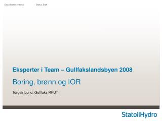 Eksperter i Team – Gullfakslandsbyen 2008