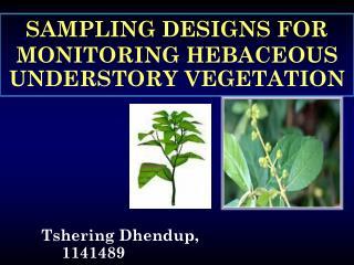 SAMPLING DESIGNS FOR MONITORING HEBACEOUS UNDERSTORY VEGETATION