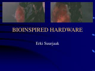 BIOINSPIRED HARDWARE