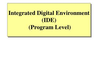 Integrated Digital Environment (IDE)  (Program Level)