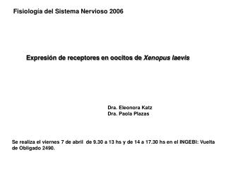 Expresión de receptores en oocitos de  Xenopus laevis