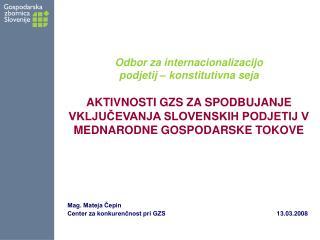 Mag. Mateja Čepin Center za konkurenčnost pri GZS                   13.03.2008