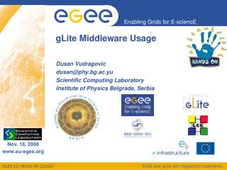 gLite Middleware Usage