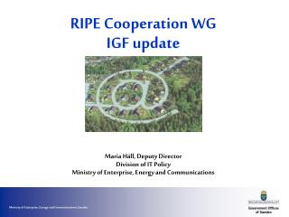 RIPE Cooperation WG  IGF update