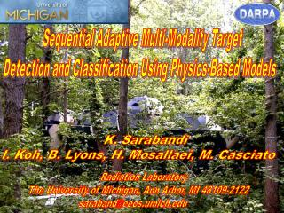 Sequential Adaptive Multi-Modality Target  Detection and Classification Using Physics-Based Models