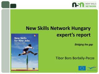 New Skills Network Hungary expert's report