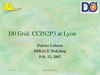D0 Grid: CCIN2P3 at Lyon