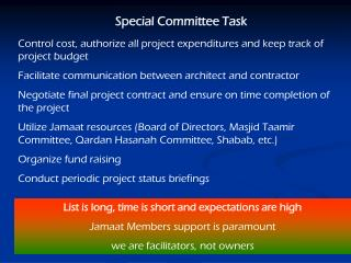 Special Committee Task