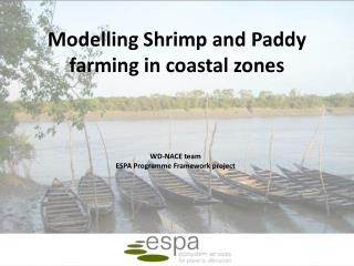Modelling Shrimp and Paddy farming in coastal zones