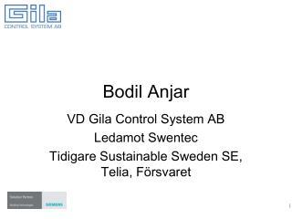Bodil Anjar