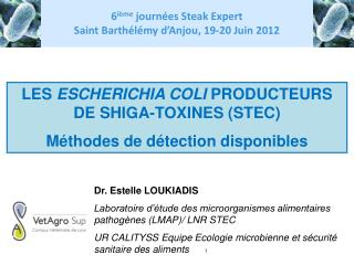 LES  ESCHERICHIA COLI  PRODUCTEURS DE SHIGA-TOXINES (STEC) Méthodes de détection disponibles