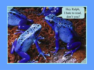 Hey Ralph,  I hate to read,  don't you?