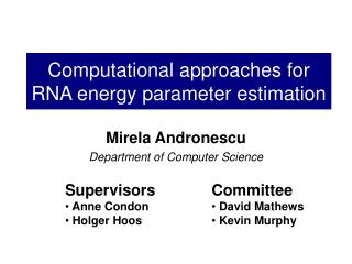 Computational approaches for RNA energy parameter estimation