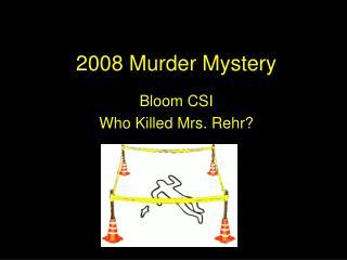 2008 Murder Mystery