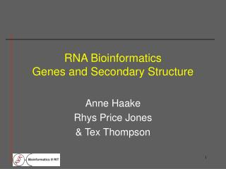 RNA Bioinformatics Genes and Secondary Structure