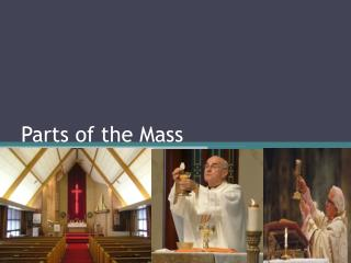 Parts of the Mass