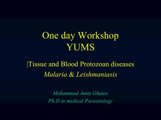 One day Workshop YUMS