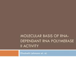 Molecular basis of  rna -dependant  rna  polymerase II activity
