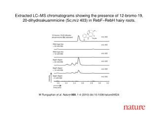 W Runguphan  et al .  Nature 000 ,  1 - 4  (2010) doi:10.1038/nature0 9524