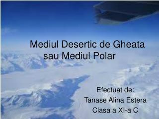 Mediul Desertic de Gheata sau Mediul Polar