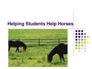 Helping Students Help Horses