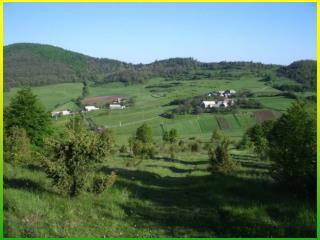 R ural  D evelopment  P rograms  in Slovakia
