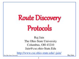 Route Discovery Protocols