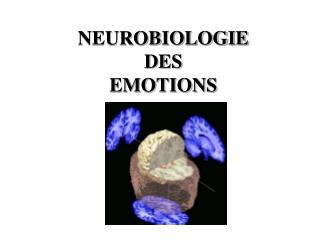NEUROBIOLOGIE DES EMOTIONS