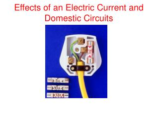 Effects of an Electric  Current  and Domestic Circuits