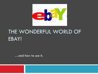 The Wonderful World of eBay!