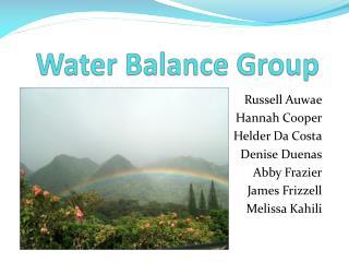 Water Balance Group